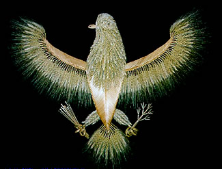 American Eagle made of wheat