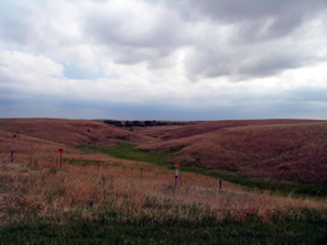 the kansas prairie